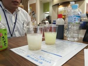 日本トリム実験3